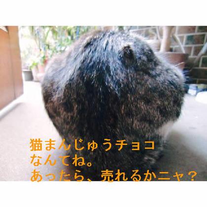 ゴマまんじゅうチョコ.JPG