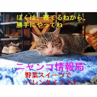 ゴマ寝ながら情報.JPG