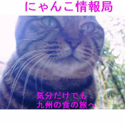 情報局九州グルメ.JPG